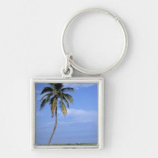 South Beach, Miami Beach, Florida, USA Keychains