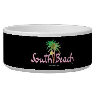 South Beach, Miami, Florida Bowl