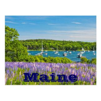 South Bristol on The Coast Of Maine Postcard