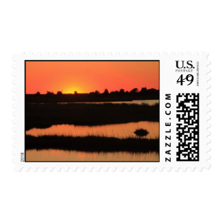 South Cape Beach Marshes at Sunset Mashpee Cape Co Stamps