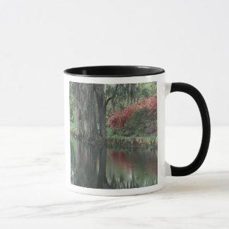 South Carolina, Charleston Mug