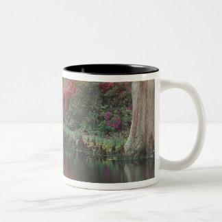 South Carolina, Charleston Two-Tone Coffee Mug