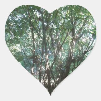 South Carolina Morning Heart Sticker