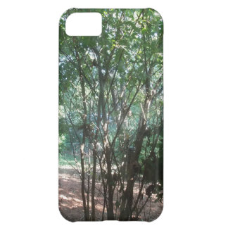 South Carolina Morning iPhone 5C Cover