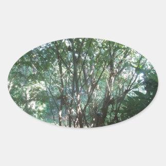South Carolina Morning Oval Sticker
