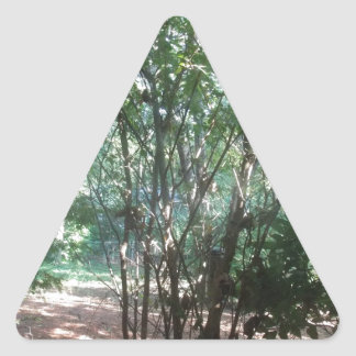 South Carolina Morning Triangle Sticker