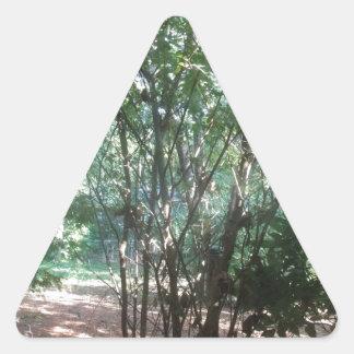 South Carolina Morning Triangle Sticker