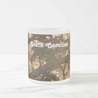 South Carolina 10 Oz Frosted Glass Coffee Mug