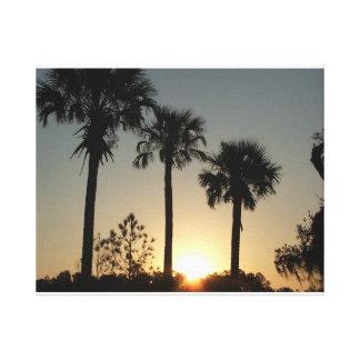 South Carolina Palmetto Sunrise Canvas Print