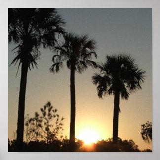 South Carolina Palmetto Sunrise Print