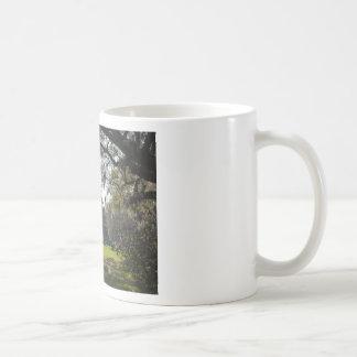 South Carolina Plantation House Coffee Mug Photo