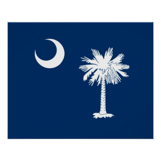 South Carolina State Flag Design Accent Poster