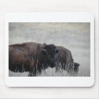 South Dakota Buffalo Nature Picture Mouse Pad