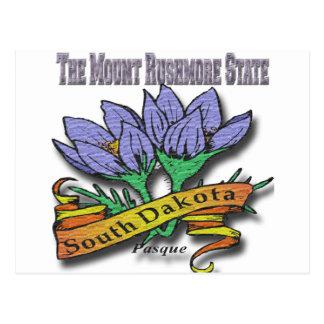 South Dakota Mount Rushmore Pasque Postcard