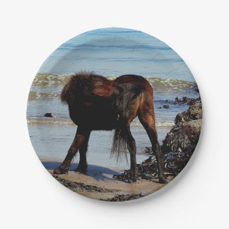 South Devon Beach Dartmoor Pony Biting Tail Paper Plate