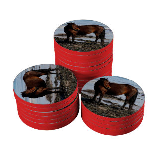 South Devon Beach Dartmoor Pony Looking Poker Chip Set