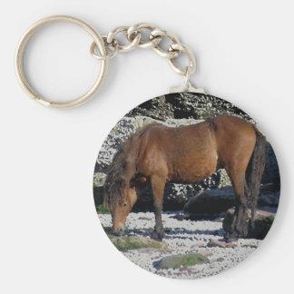 South Devon Beach Dartmoor Pony Sniffing Rocks Basic Round Button Keychain