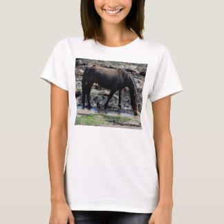 South Devon Beach Wet Looking Dartmoor Pony T-Shirt