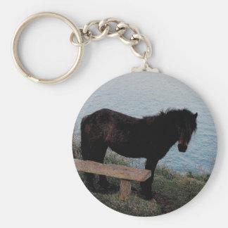 South Devon Coast Dartmoor Pony Near Bench .3. Basic Round Button Keychain