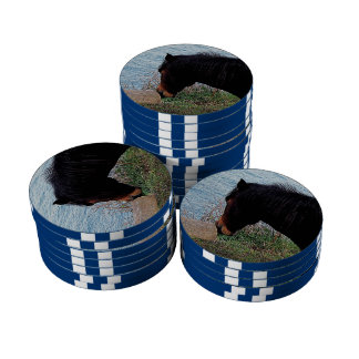 South Devon Coast Dartmoor Pony Sniffing Bench Poker Chips Set