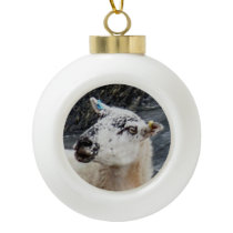 South Devon Coast Sheep On Rocks Looking Ceramic Ball Christmas Ornament