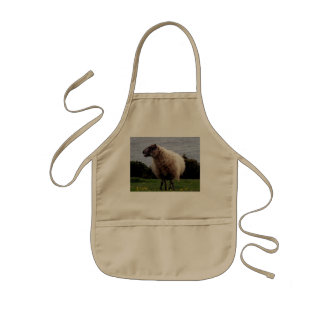 South Devon Coast Sheep Standing Looking Apron
