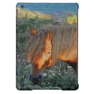 South Devon Coastline Dartmoor Pony Summer Evening iPad Air Covers