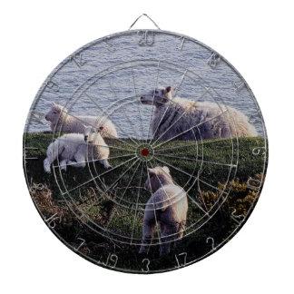 South Devon Coastline Sheep And Lambs Resting Dartboards
