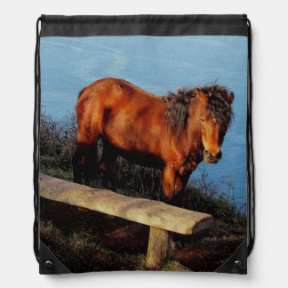 South Devon Dartmoor Pony Near Bench . 2 Drawstring Backpack