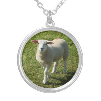 South Devon Lamb Looking At Me With Interest Custom Necklace