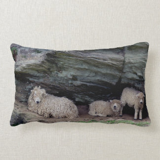 South Devon Long Wool Sheep Family Sheltering Throw Pillow