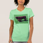 South Devon Ruby Red Cow And Young Calf Shirt