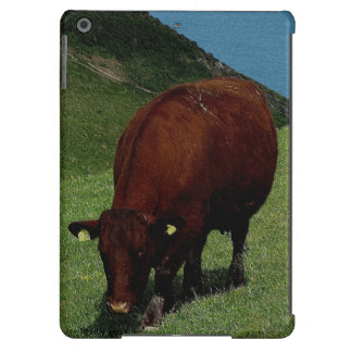 South Devon Ruby Red Cow Roaming On Coastline iPad Air Cases
