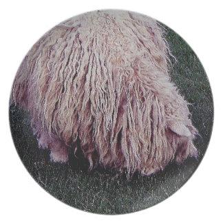 South Devon Scruffy Long Sheep Grazeing Melamine Plate