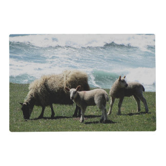 South Devon Sheep And Two Lambs On Wild Coastline Placemat