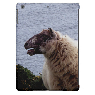 South Devon Sheep On Remote Coastline iPad Air Cover