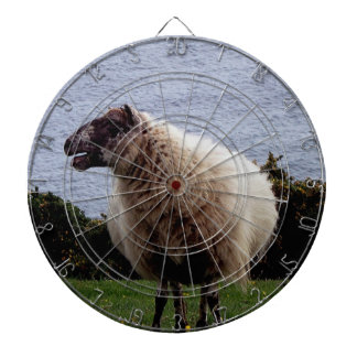 South Devon Sheep On Remote Coastline Looking Dart Board