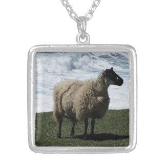South Devon Sheep On Wild Coastline Square Pendant Necklace