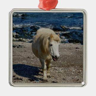 South Devon Shetland Walking On Remote Beach Square Metal Christmas Ornament