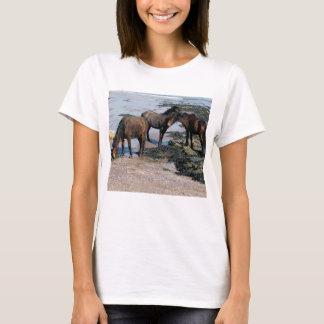 South Devon Three Dartmoor Ponies Playing On Beach T-Shirt