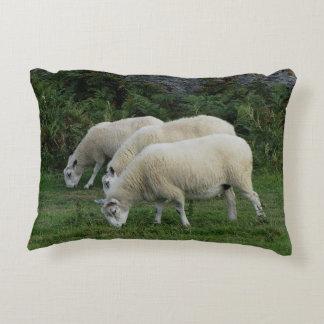 South Devon Three Sheep Grazing In Line Decorative Pillow