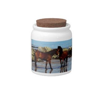 South Devon Two Dartmoor Ponies Playing On Beach Candy Jar