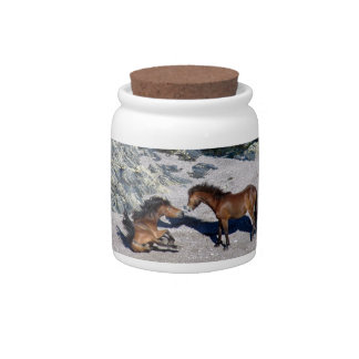 South Devon Two Dartmoor Ponies Playing On Beach Candy Dish