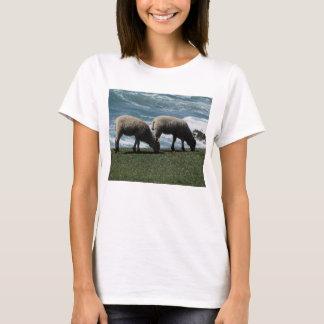 South Devon Two Lambs Grazing On Wild Coastline T-Shirt