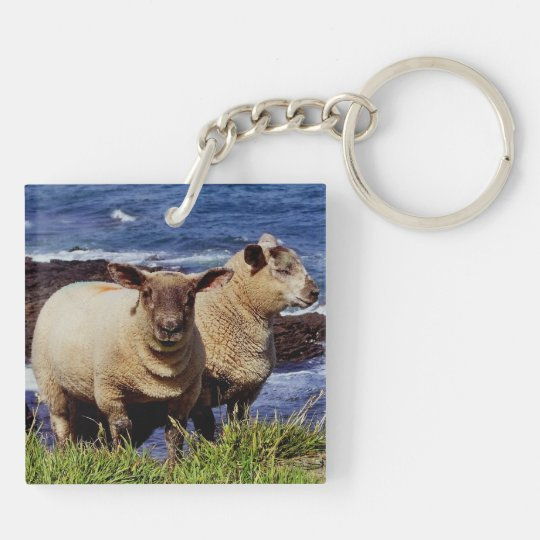 South Devon Two Lambs Standing Cliff Edge Keychain