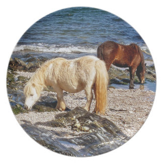 South Devon Two Ponies In Rocks On Remote Beach Melamine Plate