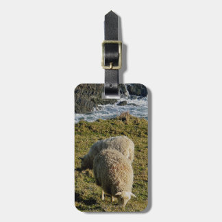 South Devon Two Sheep Grazeing On Wild Coastline Luggage Tags