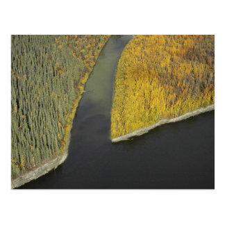 South Fork of Koyukuk River Postcard