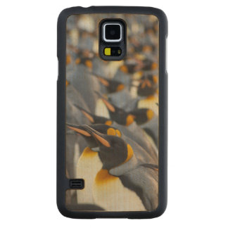 South Georgia Island, Gold Harbor. King 2 Carved® Maple Galaxy S5 Case