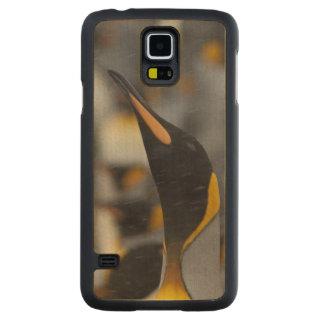 South Georgia Island, Salisbury Plain. Second Carved® Maple Galaxy S5 Case